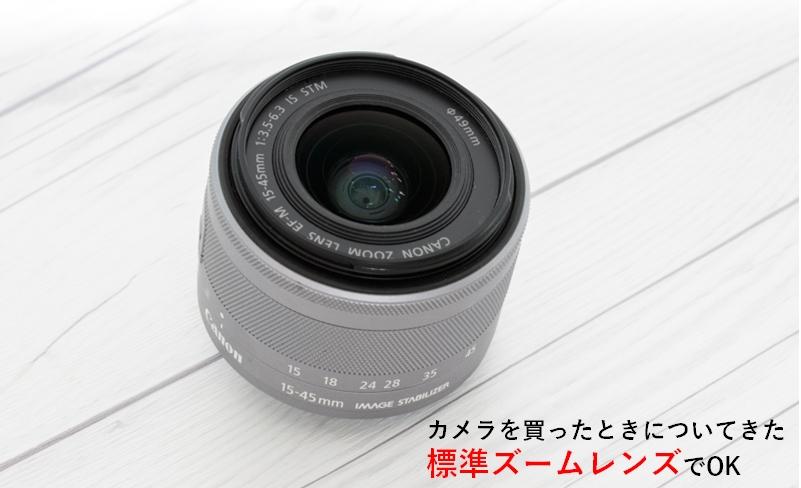 APS-C 標準ズームの焦点距離を拡大した写真