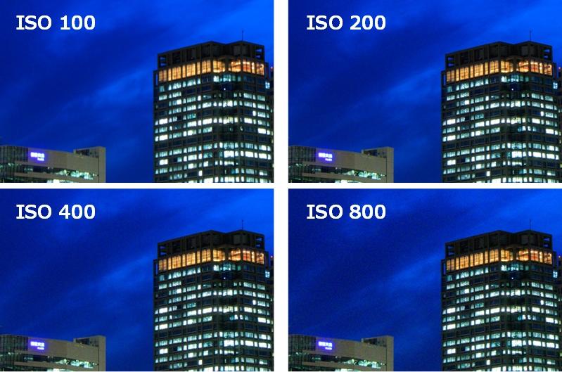 ISO 100と200と400と800で撮り比べた拡大