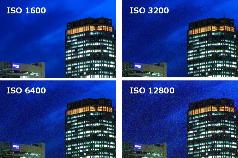 ISO 1600と3200と6400と12800で撮り比べた拡大