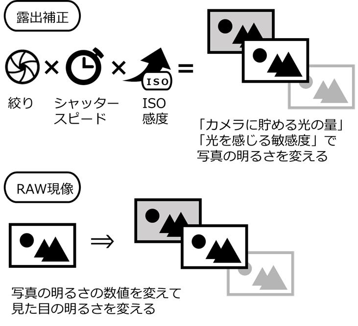 イラスト 露出補正とRAW現像の違い
