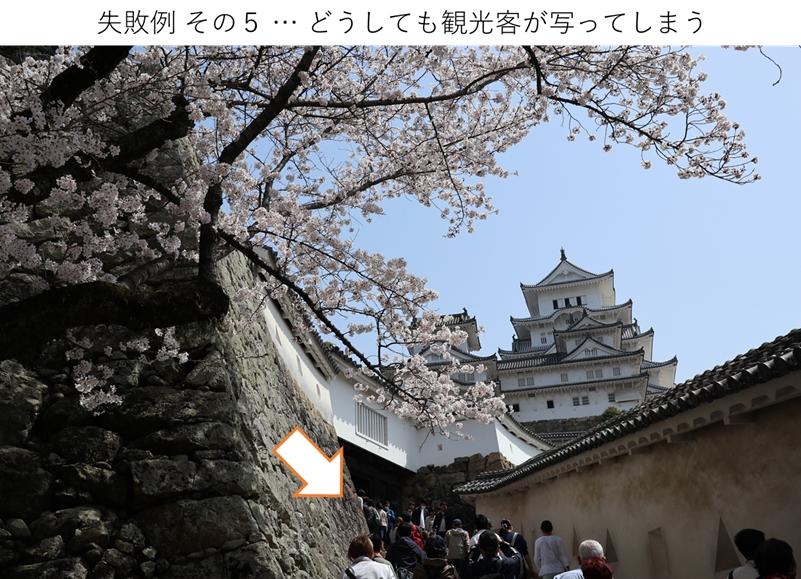 桜と人混みが写った写真