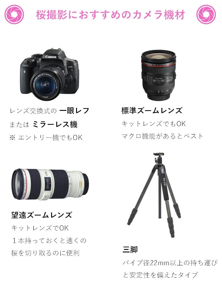 桜撮影におすすめのカメラ機材、カメラ、標準ズーム、望遠レンズ、三脚の写真