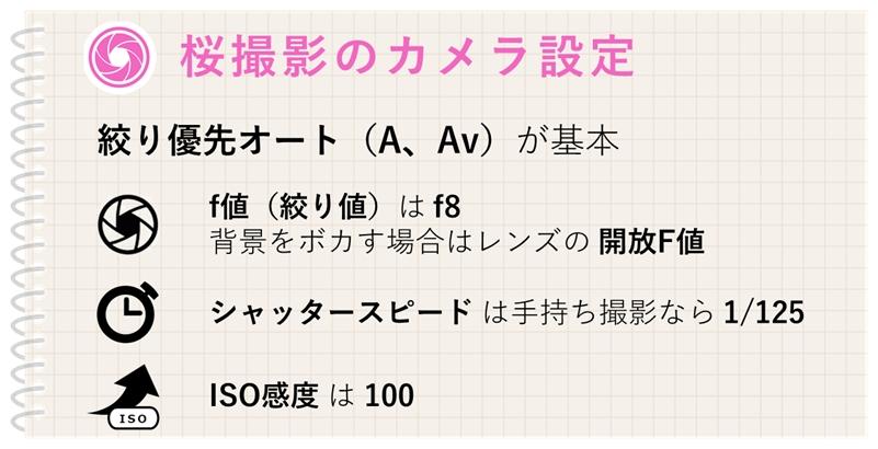 桜撮影のカメラおすすめ設定、絞り優先、f8、ISO100