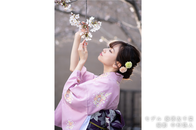 桜ポートレート作例 着物姿のモデルが桜を手で触る