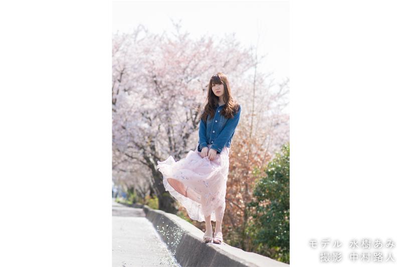 桜ポートレート作例 少し高い場所に立ってもらう