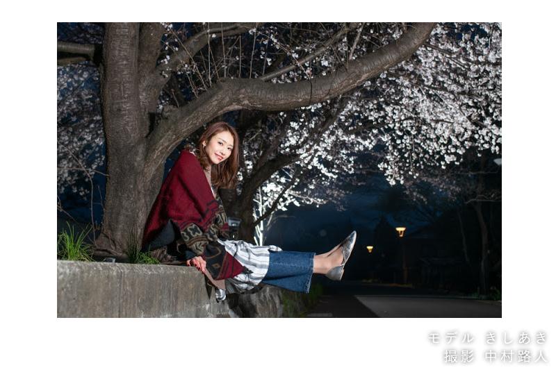 桜ポートレート作例 桜の花作例
