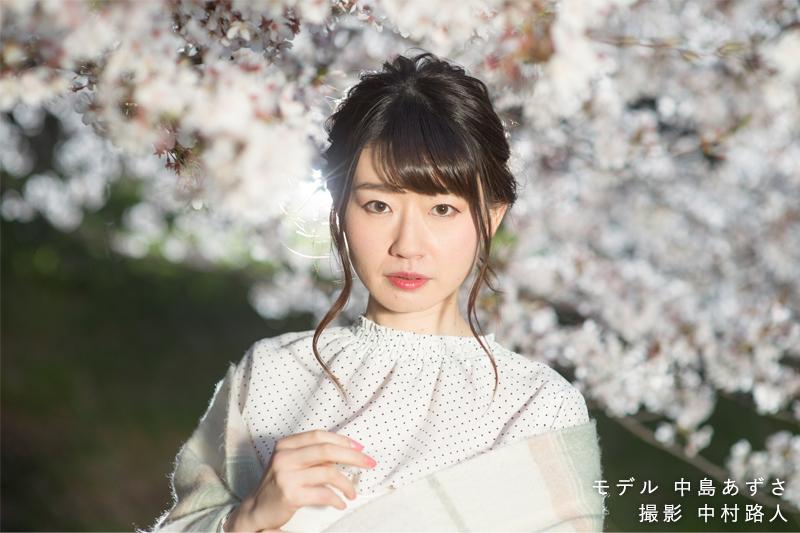 桜ポートレート作例 リムライト