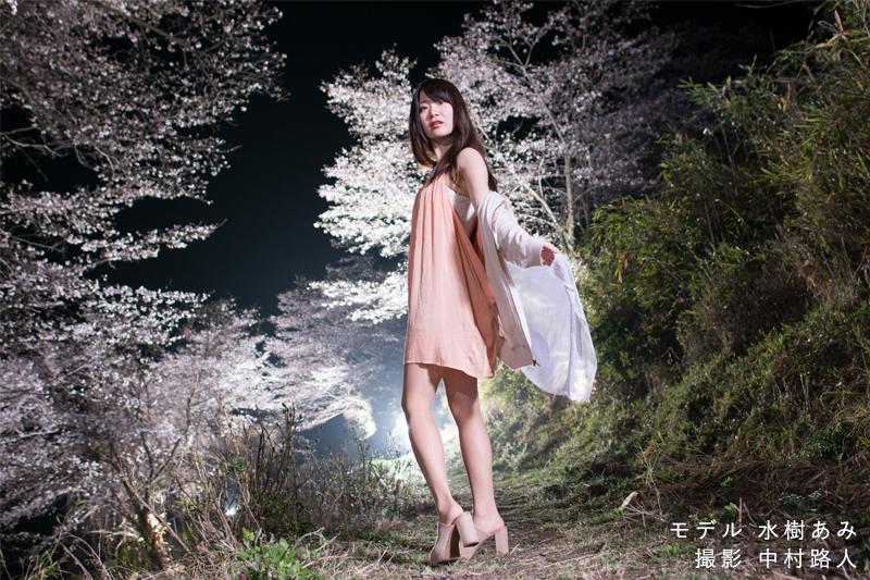桜ポートレート作例 ストロボ5,6灯