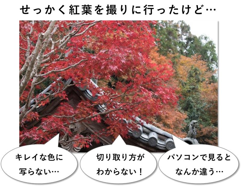 よくある紅葉の失敗写真