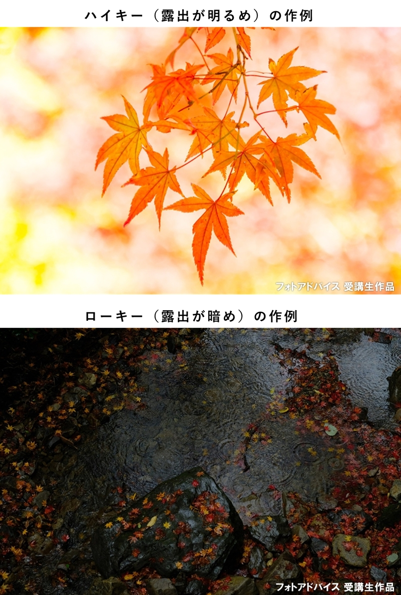 ハイキーとローキーの露出で撮った紅葉の写真
