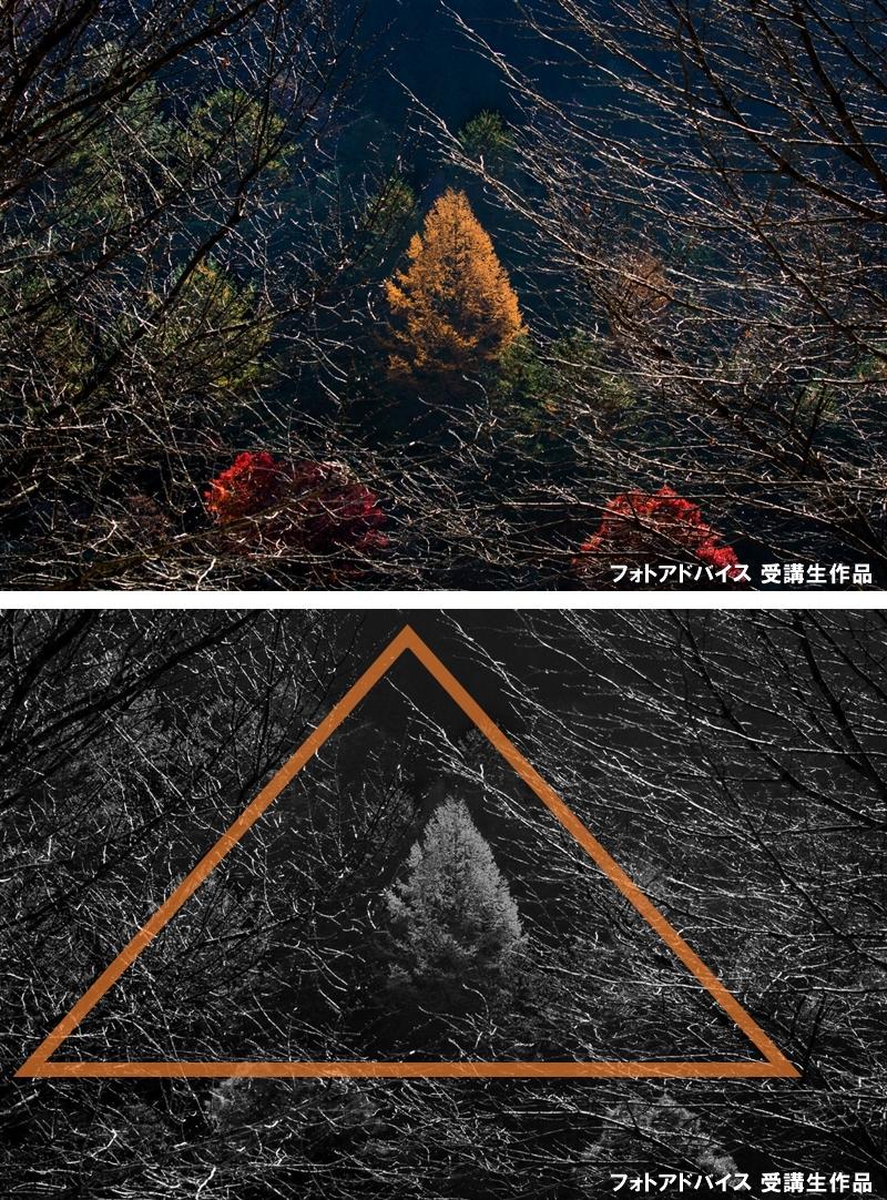 枝を三角に配置した紅葉写真