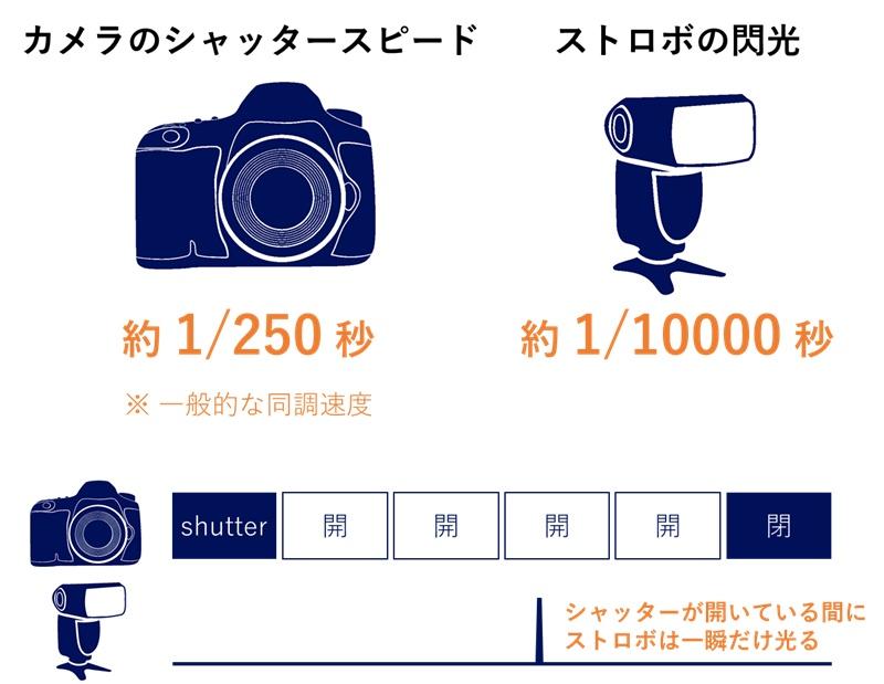 ストロボが光っている時間は、カメラのシャッターが開いている時間に対して40倍も短い
