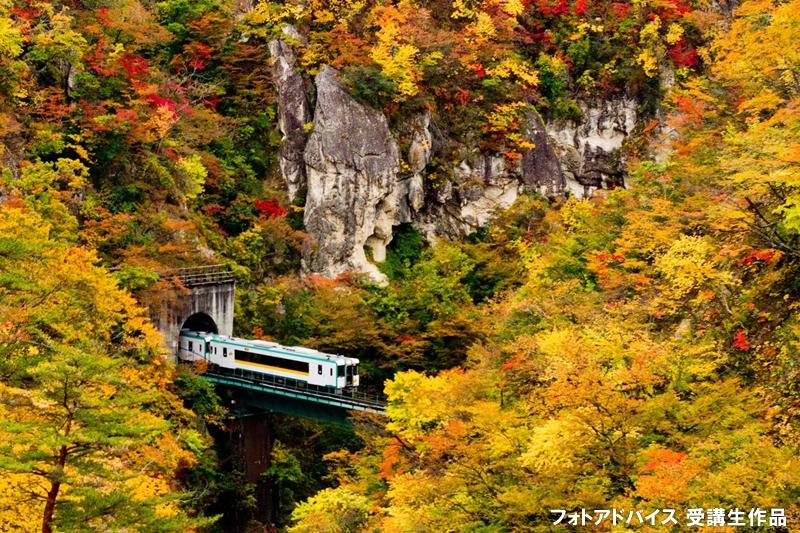電車と紅葉の写真