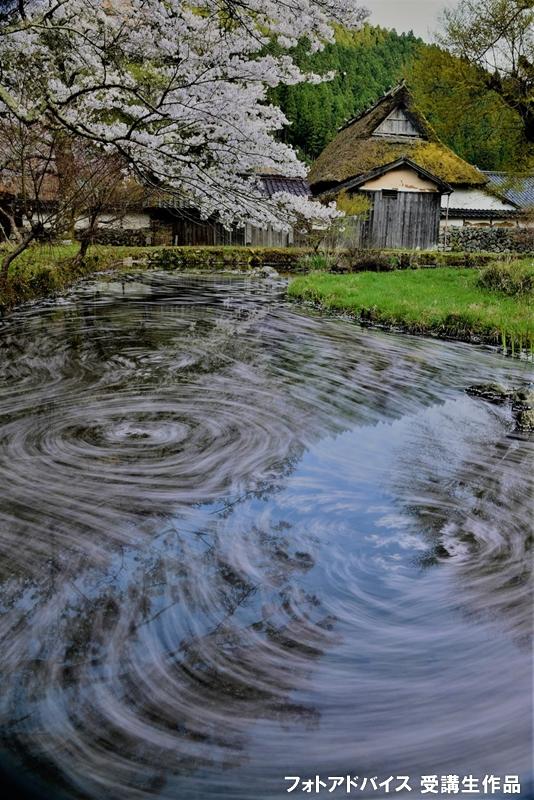 桜のグルグル長秒露光写真を静物と一緒に撮った写真
